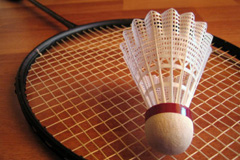 badminton racket_small